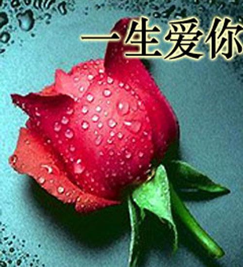 一生爱你-中国基督教复临安息日会